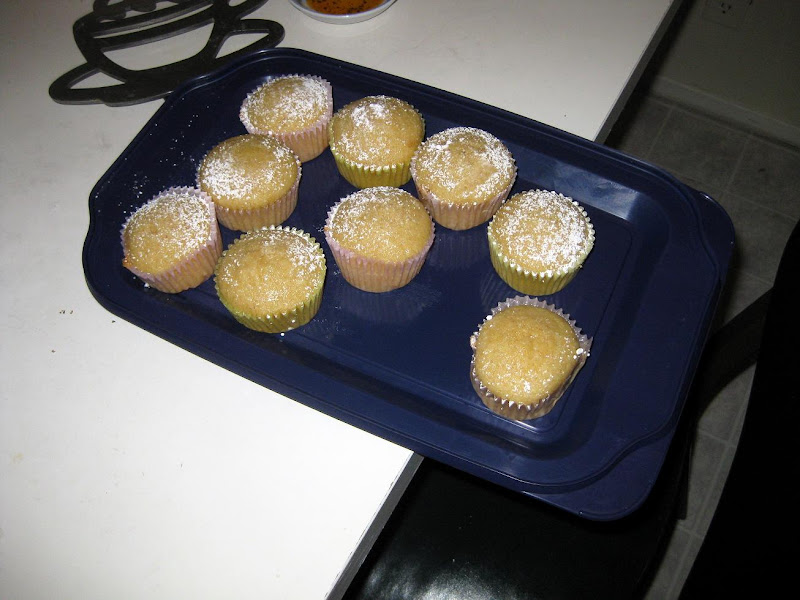blogger white elephant/potluck vegan cupcakes with powdered sugar