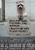 ¡¡NO al comercio de pieles!!