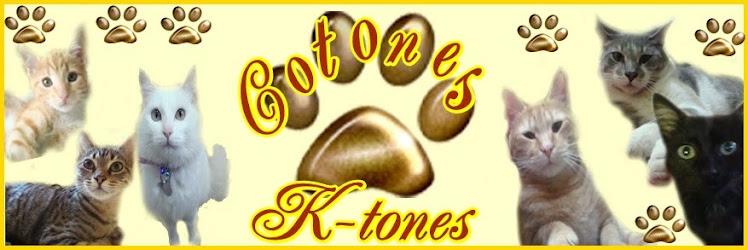 COTONES KTONES