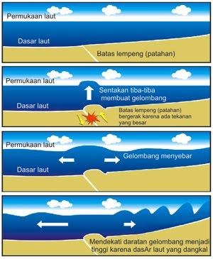 Facts About Tsunami