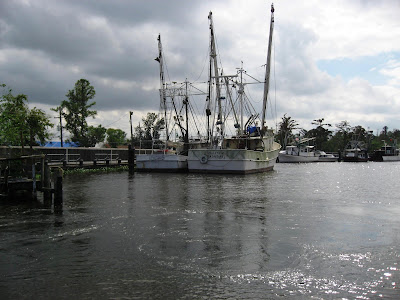 New Orleans Bayou Tour