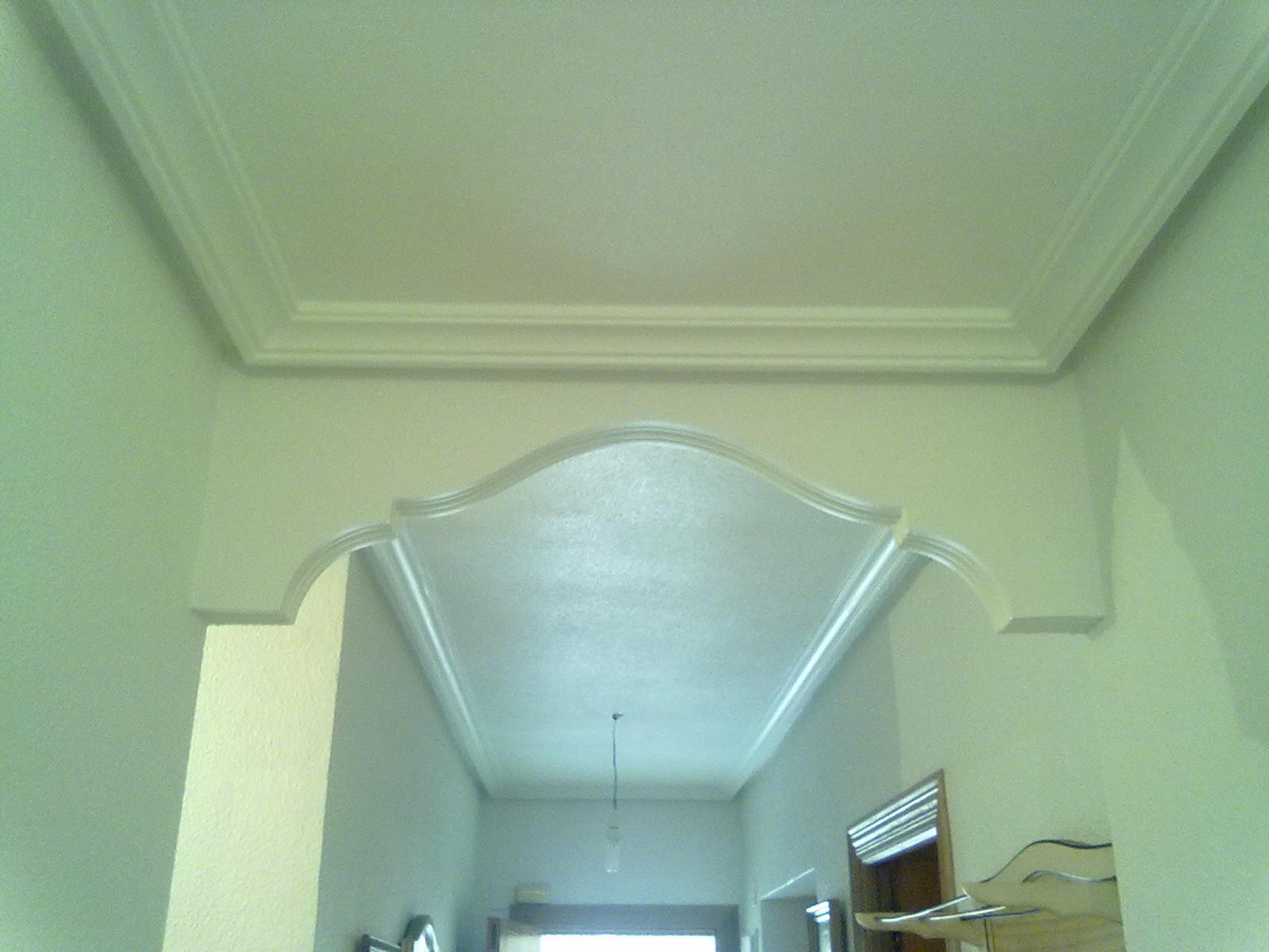 Pladur en alicante elche santa pola torrevieja - Precio moldura escayola techo ...