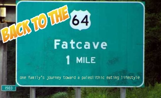 Back to the Fatcave
