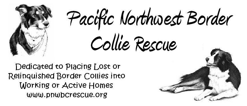 Pacific Northwest Border Collie Rescue