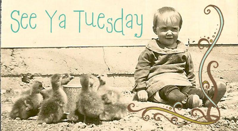 See Ya Tuesday