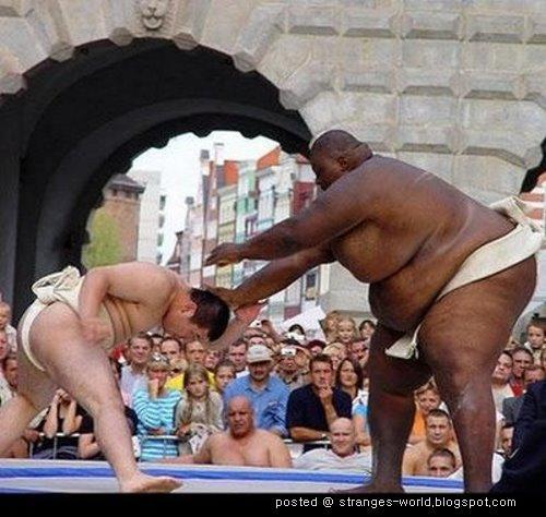 [sumo-wrestler-6.jpg]