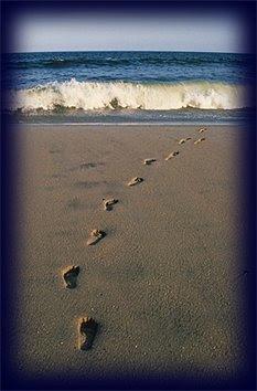 Kun ét sæt fodspor