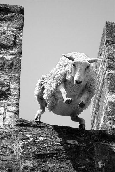Til den der tæller får