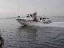 Team Vedos Båt