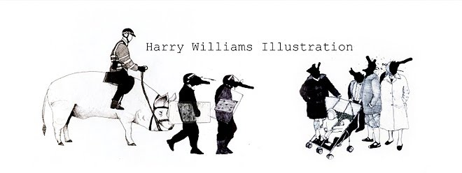 harry williams illustration