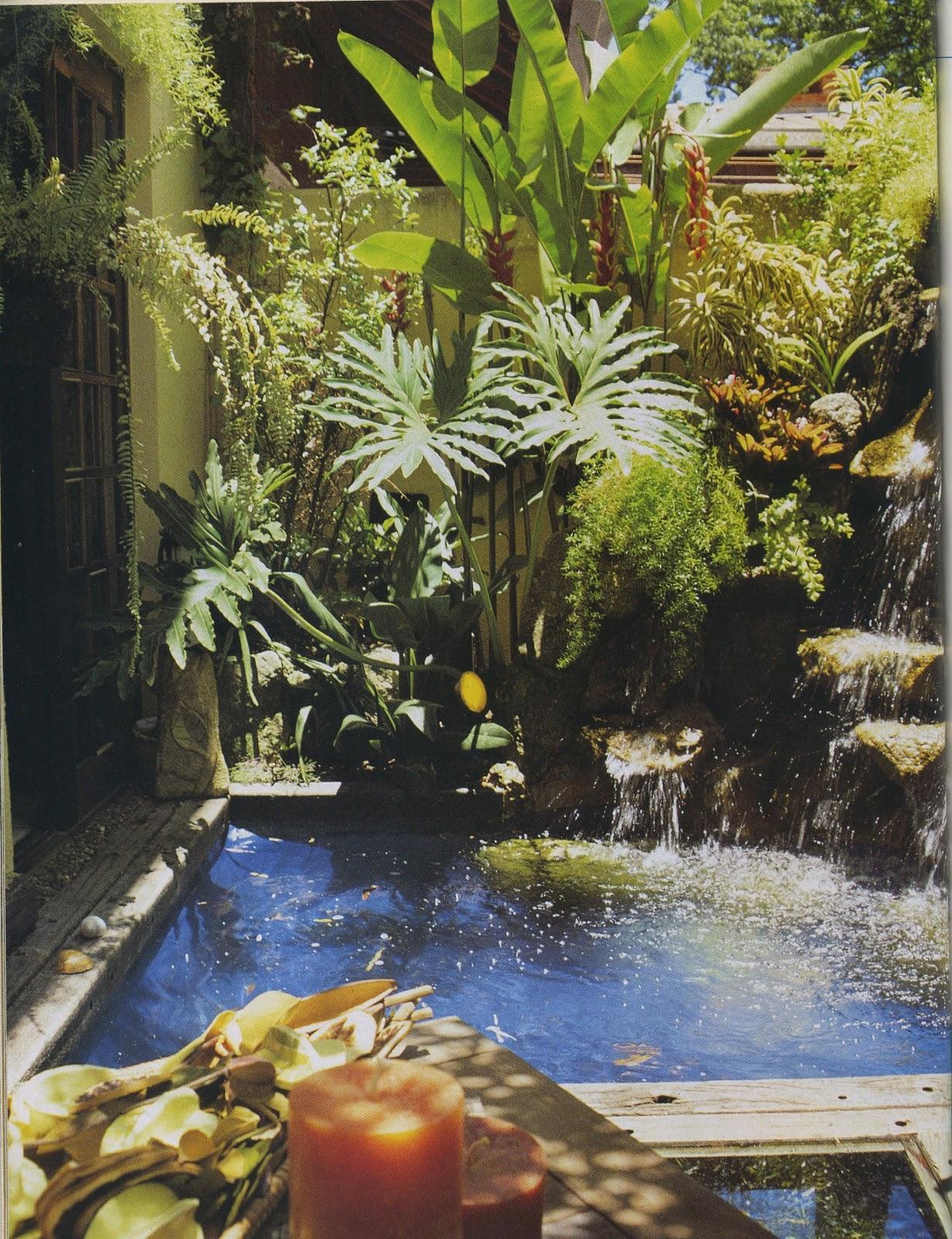 plantas jardim tropical:trilhadomato: [Jardins] Jardim Tropical