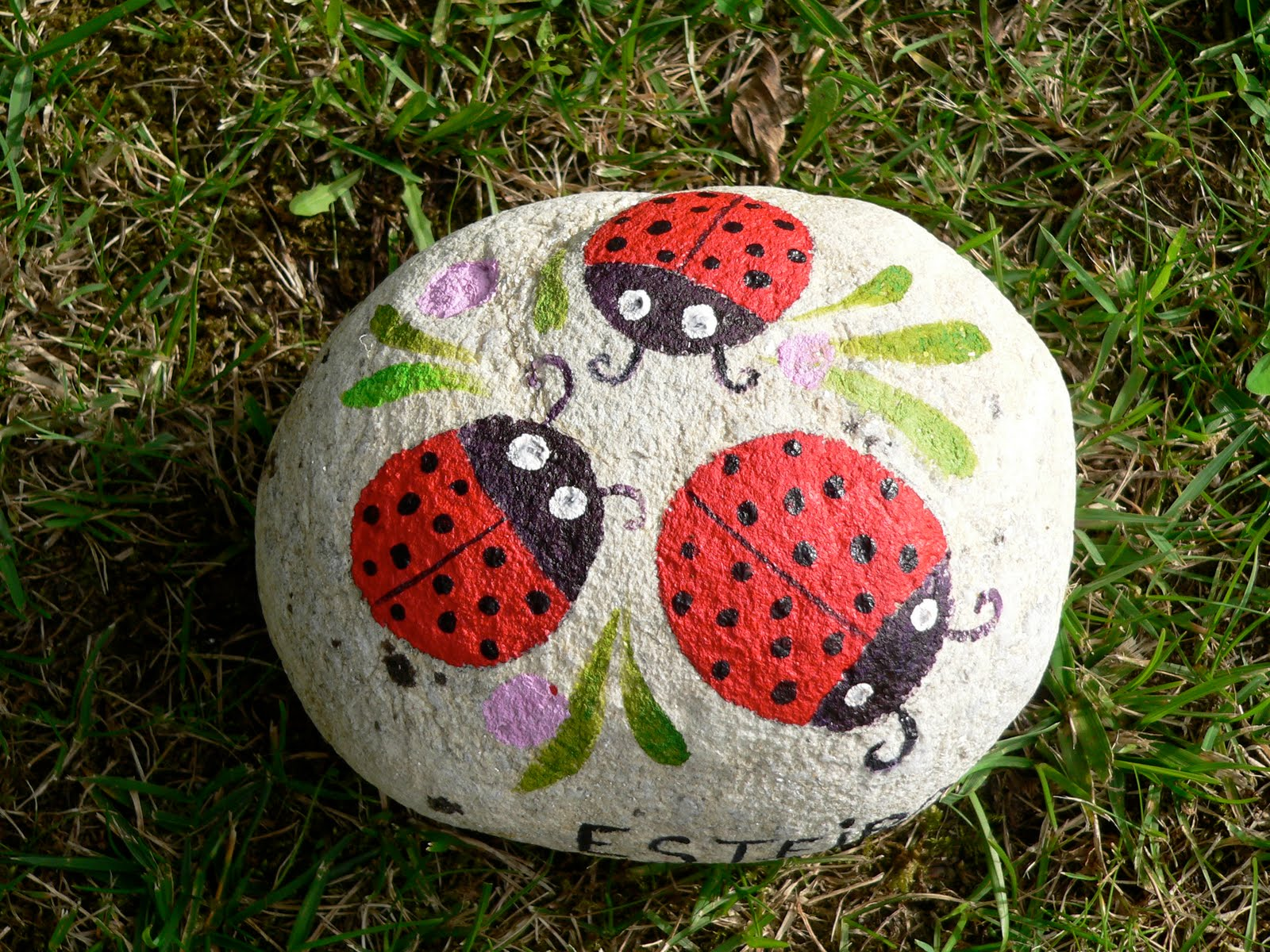 Mam pata piedras pintadas for Piedras pintadas para jardin