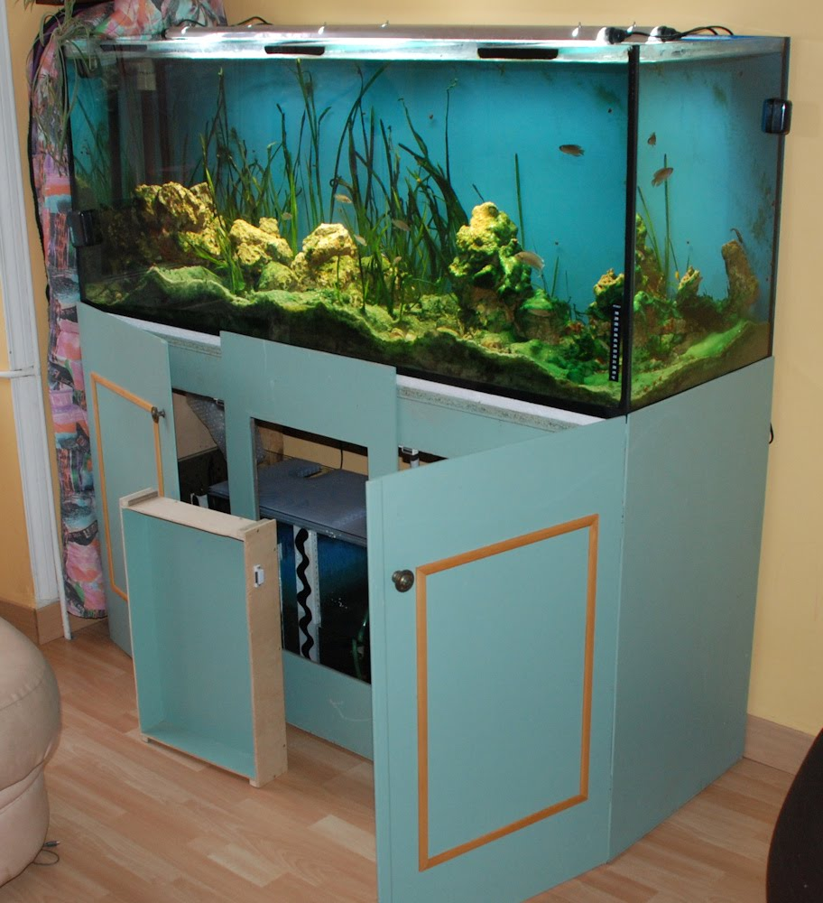Le blog aquarium de ccante vends aquarium 450 litres for Prix poisson aquarium