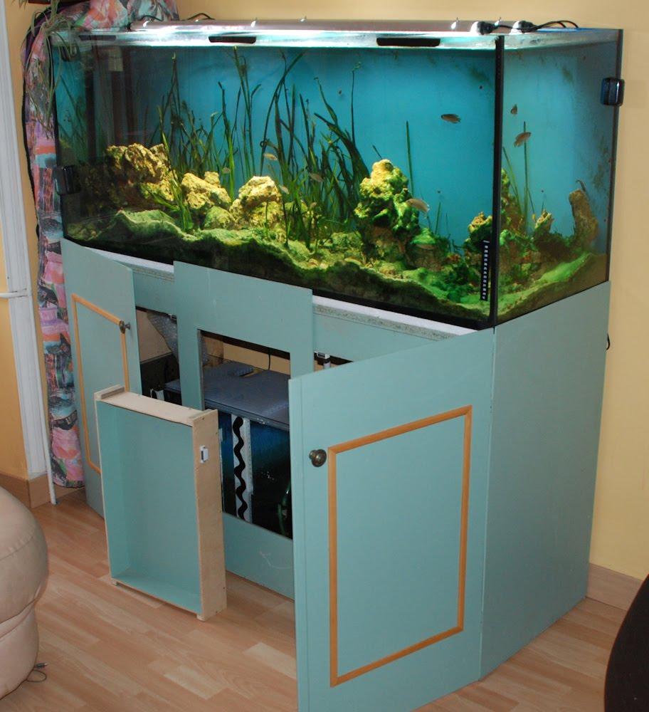 Le blog aquarium de ccante vends aquarium 450 litres for Prix poisson aquarium