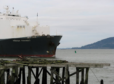 Ship Hoegh Transit in Astoria, Oregon, by the crumbling docks
