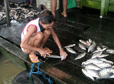 Woman gutting Fish on the Amazon River, Brazil