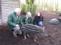 Sheryl Todd Visits Dudley Zoo, UK