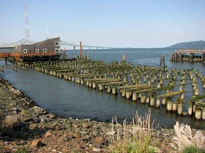 Brown Pilings, Columbia River at Astoria, Oregon