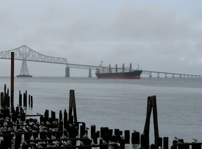 Astoria scene with bridge, river, gulls, and ship