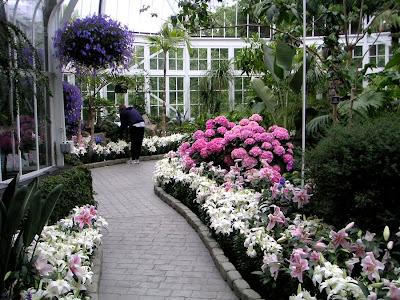 The Seymour Conservatory, Wright Park Arboretum, Tacoma, Washington