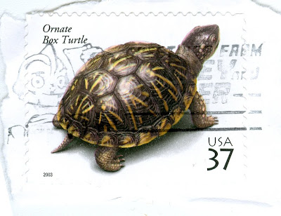 Ornate box turtle on a US postage stamp