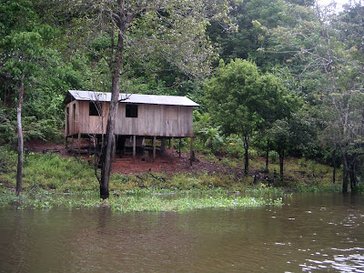 Housing along the Amazon River