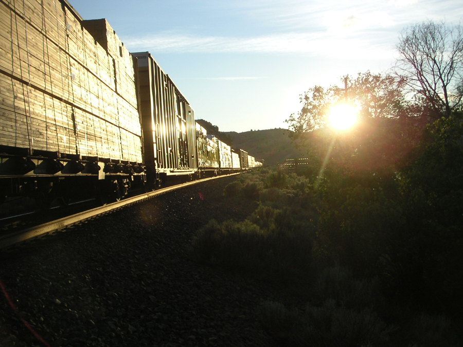 A Train at South Junction, Oregon