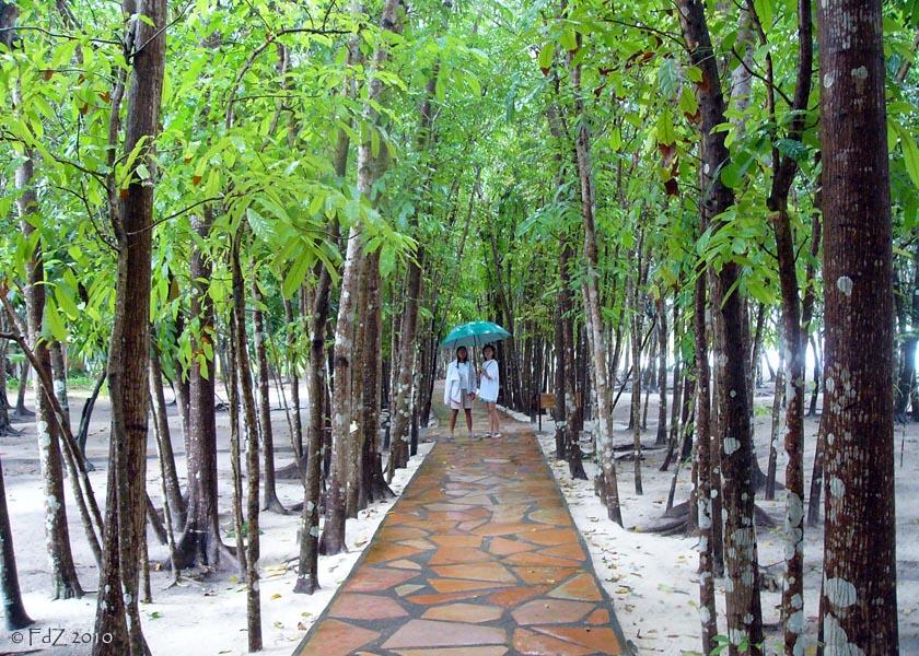 Bohol Resort, Philippines