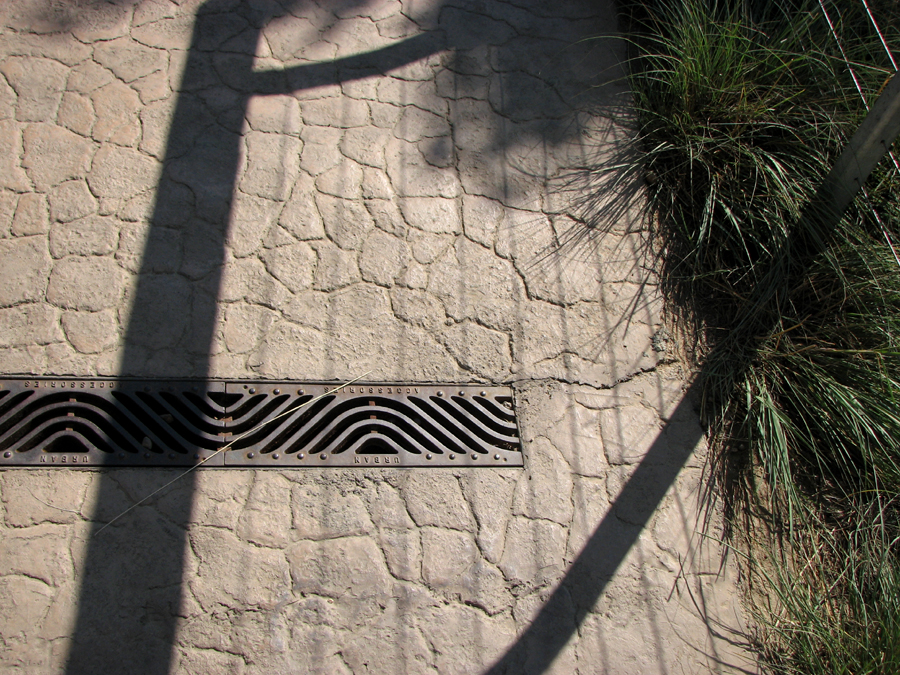 Wavy Grating and Trees at San Diego Zoo