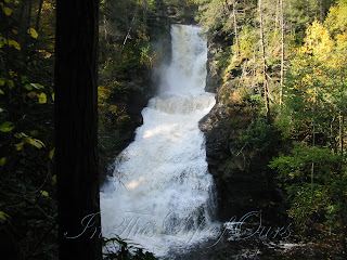 Dingman's Ferry Falls