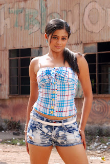Priyamani actress new hot spicy sexy phtos,Sexy Photo Hot Sexy ,Spicy