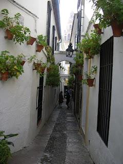 Imagini Andaluzia: Calleja de los Flores Cordoba