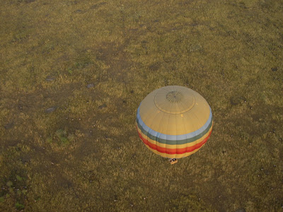 Imagini din balon peste Masai Mara