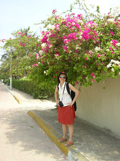 Flori tropicale in Mexic