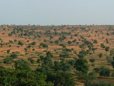 Imagini Mali: desertificare in Sahel - Pays Dogon
