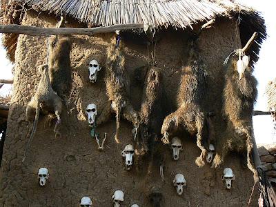 Imagini Pays Dogon: casa vanatorului din Begnimato