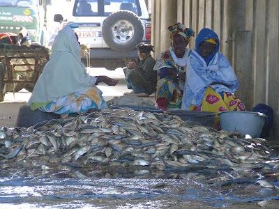 Obiective turistice Mauritania: piata de peste din Nouakchott