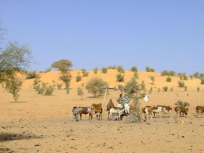Imagini Africa: drumul spre Bamako