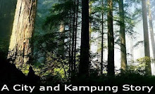 Visit A City and Kampung Story Here