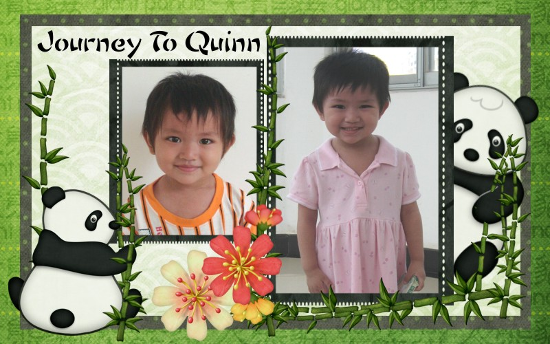 Journey To Quinn