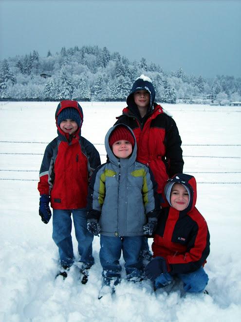 January Snow 2006