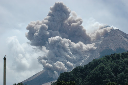 Wedus Gembel Gunung Merapi
