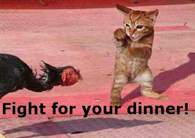 Funny Pictures: A dinner fight