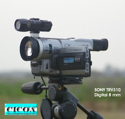 SONY TRV 310  DIGITAL