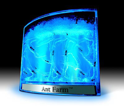 gel ant farm instructions