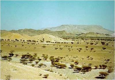 المحميات الطبيعيه في سلطنة عمان