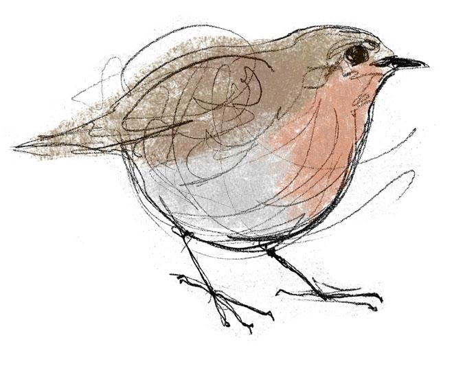 Christmas card drawing ideas