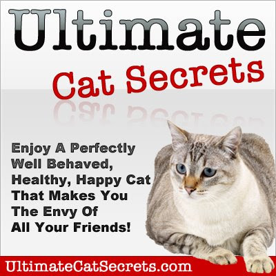 Ultimate Cat Secrets