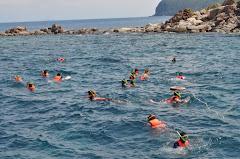 Aktiviti Snorkeling