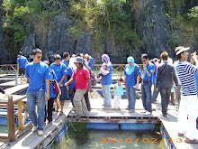 Mangroove Safari - Kilim Geoforest Park